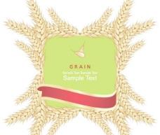 矢量麦穗创意个性设计图片