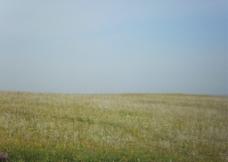 自然风景 大草原图片