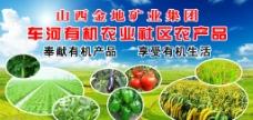 农产品图片