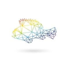 鱼logo图标图片