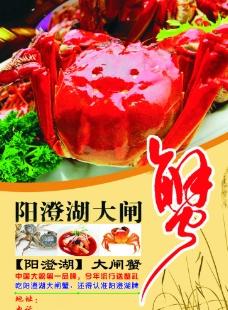 阳澄湖大闸蟹宣传单图片