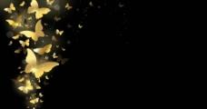 金蝴蝶背景图片