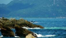 海洋风光 海上游艇图片