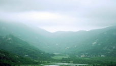 海滨田园 云雾笼罩图片