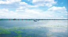 巴仙蟹王养殖水域图片