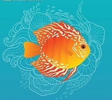 海鱼海洋生物图片