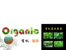 有机蔬菜纸箱图片