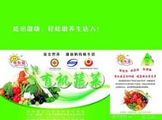 蔬菜盒子图片