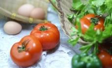 蔬菜摄影图片