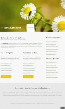 鮮花攝影類網頁