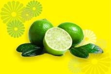 柠檬花纹图图片
