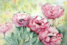 位图 植物 写意花卉 玫瑰 免费素材