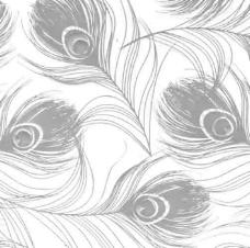 位图 休闲风 羽毛 免费素材