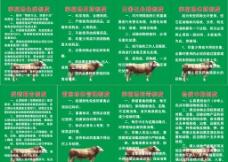 養殖場制度圖片