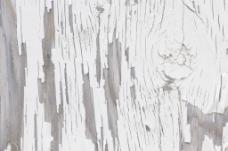 油漆的木材纹理