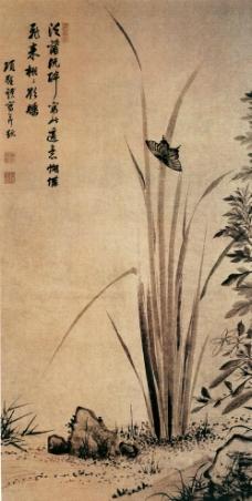 蝴蝶 国画图片