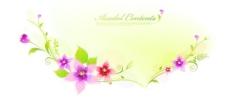 花朵裝飾邊框素材