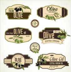 橄欖油圖片