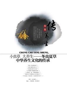 中华文化虫草养生