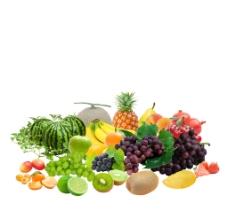 水果集圖片